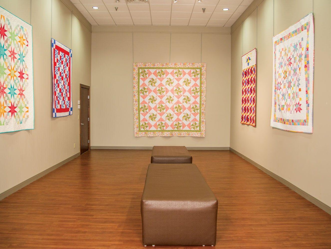 Eleanor Burns Quilt Gallery at AccuQuilt